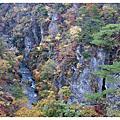 2008東北賞楓