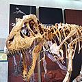 2013-05-15 台中科博館從龍到獸特展
