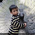 2012春節出遊-寶來泡湯趣