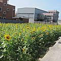 2013.12.06~2013竹北市農業產業文化活動-花田囍市