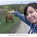 2008May[亞美尼亞]我在亞美尼亞的日子part 2