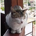 20080910~0911[土耳其]番紅花城Safranbolu