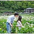 20090419[台北]竹子湖海芋季