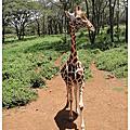 2010Apr[肯亞]我在肯亞的日子part1