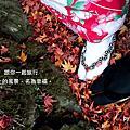 2012秋日楓紅徵文