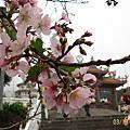 98春-天元宮