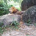 峇里島野生動物園