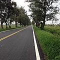 騎單車環島