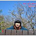 20140111-梅山公園賞梅