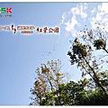 20131206-紅葉公園