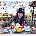 20180324 臺灣詩路木棉花