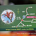 【花蓮縣富里鄉】六十石山~2013第1朵金針花‧期待花蓮金針花季