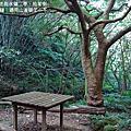 20121021-大溪  金山面山、金面山