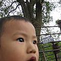 2010  機車冒險之旅~新社薰衣草森林半日遊