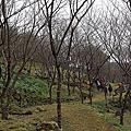 2012.1.8桃源仙谷