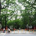 2015.6.16三千院,下鴨神社