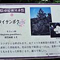 2015.6.17松尾大社,金閣寺,植物園