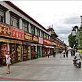 2014西藏
