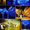 嘉義DARK ART夜光3D藝術展