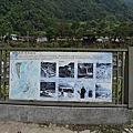 新竹五峰清泉吊橋