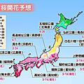 日本歷年櫻花盛開資訊
