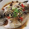 170102[嘉義市]木馬花園簡餐、義式料理、鍋物三訪