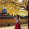 秋末。楓。景福、三清、中央大