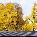 2013 賞楓之旅 DAY3 - 東本願寺