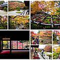 2016 南禪寺楓葉