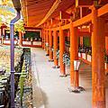 【奈良楓景】春日大社