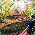 【奈良楓景】水谷茶屋