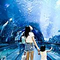 整個海邊都是我的夏天 墾丁-海洋生物博物館