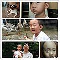 2012/07-08 生活雜記