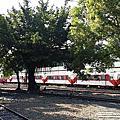 2014/10/09 嘉義 阿里山森林鐵路車庫園區