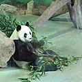 試拍-動物園