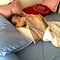 媽咪小站護頸床枕