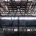 台中 舊建國市場