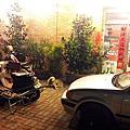 2012/02/09流浪到五甲餐廳的黃金