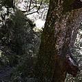 20120209~0211嘉明湖
