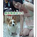 2008-8-16去找肥屁(中原)