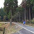 20151122滋賀雞足寺及余吴湖