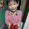 105.12.24-草莓園