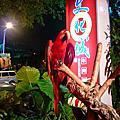 2009-10-11 竹北十一街