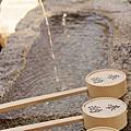 【京都花見】高台寺 2012
