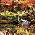 京都KYOTO。紅葉狩