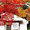 【京都紅葉】詩仙堂 2012