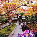 【京都紅葉】嵐山。常寂光寺 2014