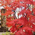 【京都紅葉】左京。極樂寺真如堂 2014