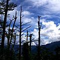2008庫哈諾辛山