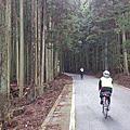 2017-04-01  BRM401 Yamaneko